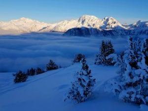 如何滑雪粉雪